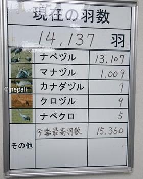 DSC_0016羽数.jpg