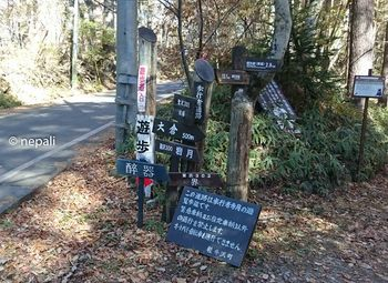DSC_0145遊歩道口.jpg