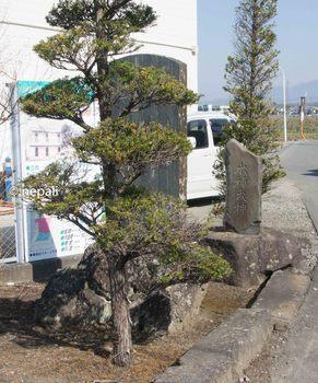 DSC_2494水神大神.jpg