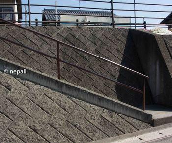 DSC_2538階段を上る.jpg