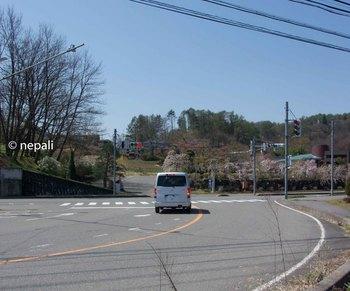 DSC_2564信号八幡西.jpg