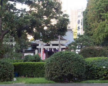 DSC_2917磐井神社.jpg