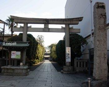 DSC_2942六郷神社.jpg