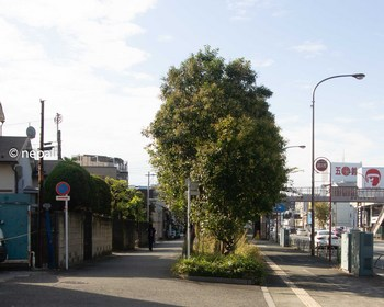 DSC_2943六郷側道入口.jpg