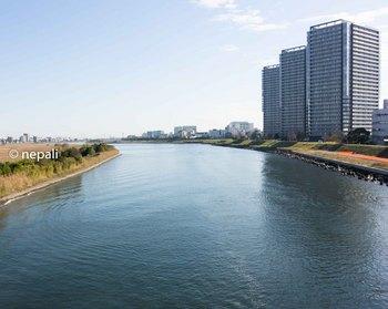 DSC_2946多摩川.jpg