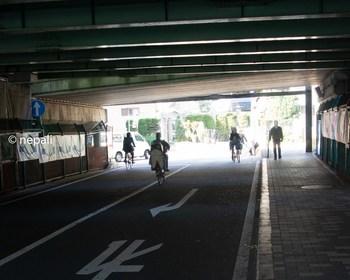 DSC_2951新六郷橋をくぐる.jpg
