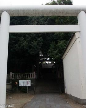 DSC_3002洲崎神社.jpg