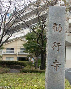 DSC_3018勧行寺.jpg