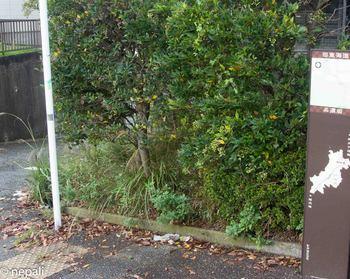 DSC_3117道標.jpg