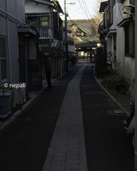DSC_3224妙善寺.JPG