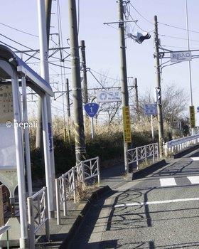 DSC_3271平塚市.JPG