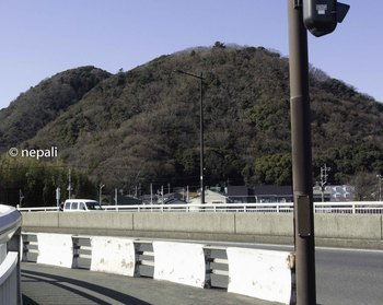 DSC_3297高麗山.JPG