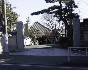 DSC_3298善福寺.JPG