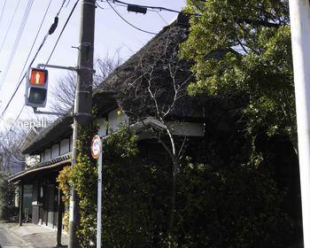DSC_3299茅葺の旧家.JPG