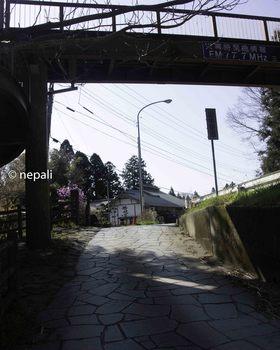 DSC_3829国道合流点.jpg