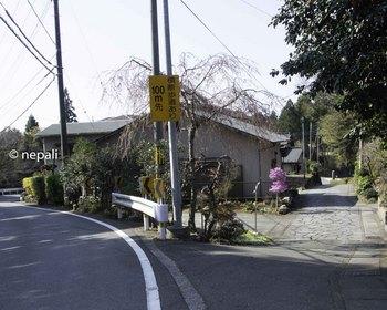 DSC_3832山中旧道入口.jpg
