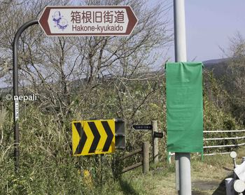 DSC_3849旧道入口.jpg