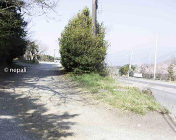 DSC_3857旧道入口.jpg