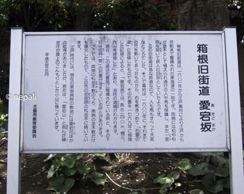 DSC_3927愛宕坂.jpg