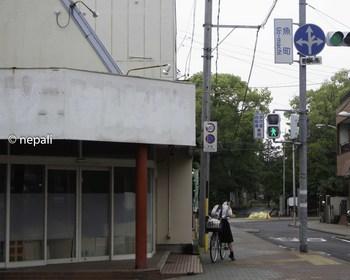 DSC_4209信号魚町.jpg