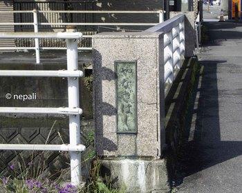 DSC_4226柳橋.jpg