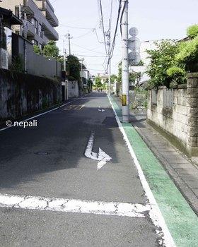 DSC_4233旧道.jpg