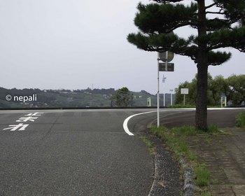 DSC_4617大井川.jpg
