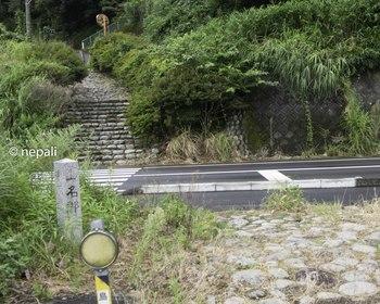 DSC_4703舗装路横断.jpg
