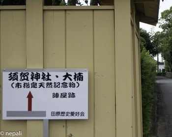 DSC_4963須賀神社.jpg