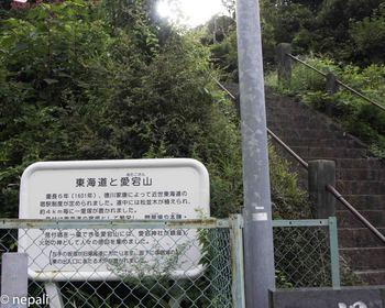 DSC_4996愛宕山.jpg