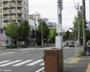 DSC_5103信号成子.jpg
