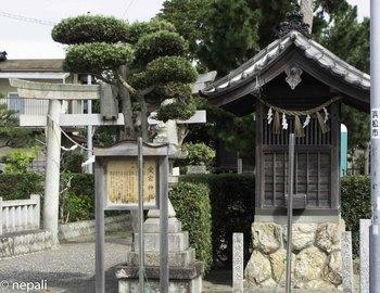 DSC_5135愛宕神社.jpg