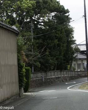 DSC_5164岐佐神社.jpg