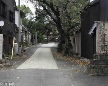 DSC_5272妙泉寺.jpg