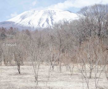 NGN_1578浅間山 ロゴ入り.jpg