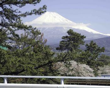 P4130074広沼橋から富士山.jpg