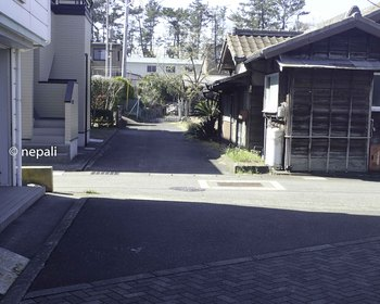 P4130088歩道.jpg