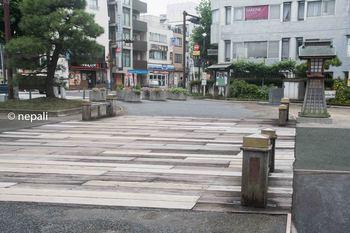 YKH_7261旧帷子橋 ロゴ入り.jpg
